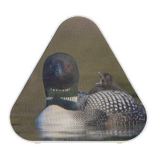 Canada British Columbia Common Loon breeding 2 Bluetooth Speaker