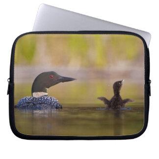 Canada, British Columbia,Common Loon, breeding 3 Laptop Sleeves