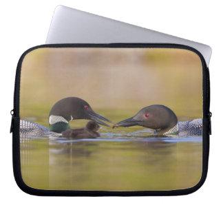 Canada, British Columbia,Common Loon, breeding Laptop Computer Sleeve