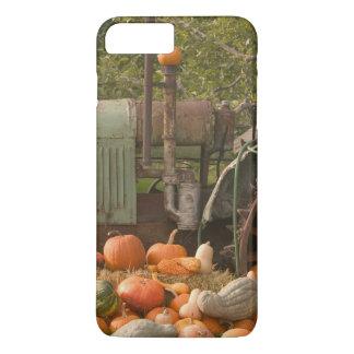 CANADA, British Columbia, Keremeos. Autumn / 2 iPhone 7 Plus Case