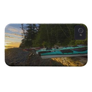 Canada, British Columbia, Vancouver Island, 2 Blackberry Bold Cases