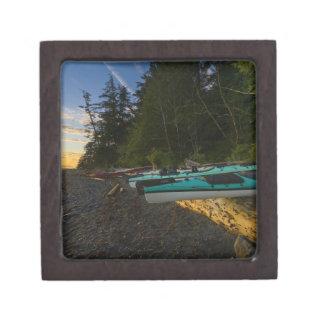 Canada, British Columbia, Vancouver Island, 2 Premium Jewelry Box