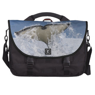 Canada, British Columbia, Vancouver Island, Bags For Laptop