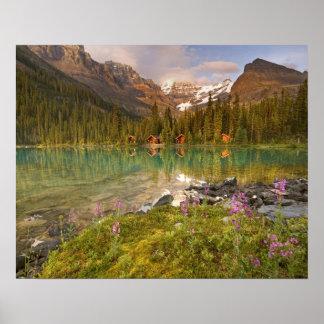 Canada, British Columbia, Yoho National Park. 2 Poster
