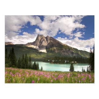Canada, British Columbia, Yoho National Park. 3 Postcard