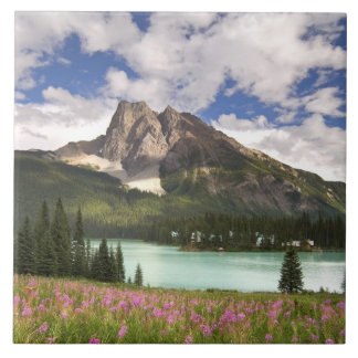 Canada, British Columbia, Yoho National Park. 3 Tile