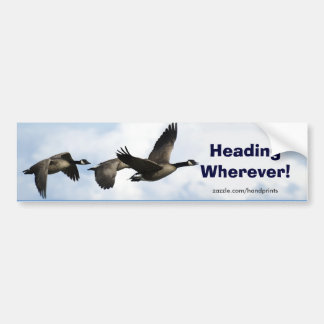Canada Geese Art Sticker Bumper Sticker