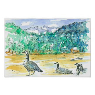 Canada Geese Blue Mountains Watercolor Sketch Art Poster