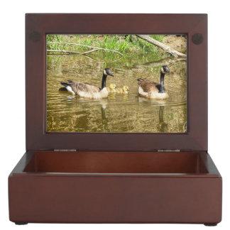 Canada Geese Family Keepsake Box