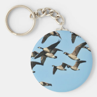 Canada Geese Flock in Flight Keychain