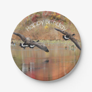 Canada Geese in Flight Paper Plate