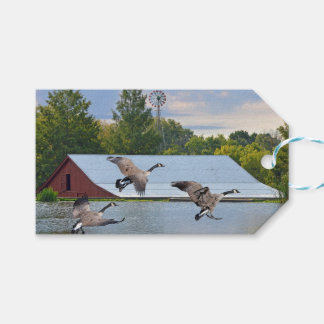 Canada Geese Landing On The Pond Gift Tags