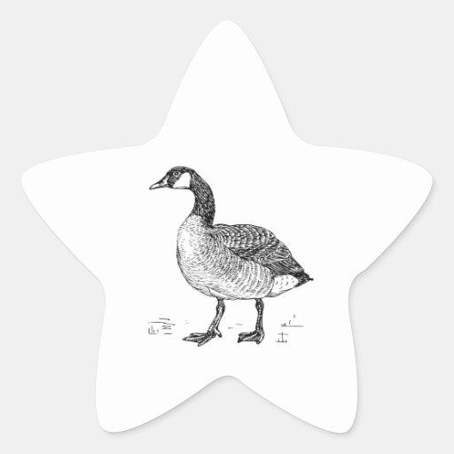 Canada Goose Bird Art Sticker