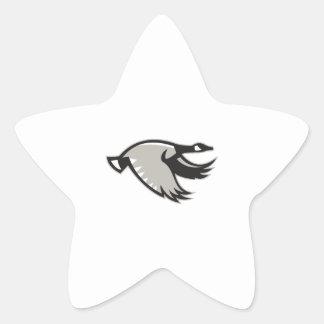 Canada Goose Flying Retro Star Sticker