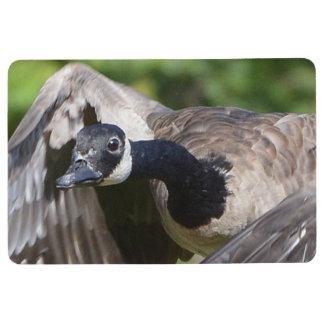 Canada Goose In Flight Floor Mat