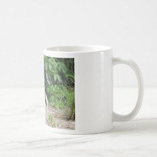Canada Goose on Her Nest Coffee Mugs