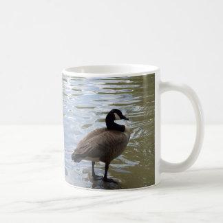 Canada Goose On Rock Coffee Mug