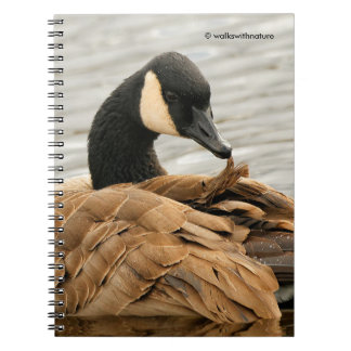Canada Goose on the Lake Notebook