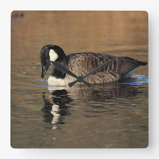 Canada Goose Square Wall Clock