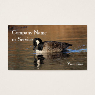 Canada goose swimming business card