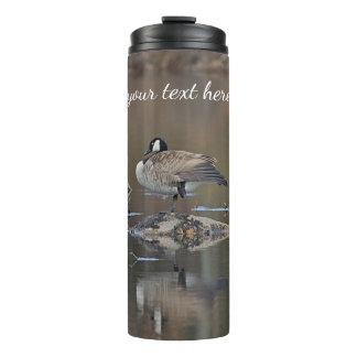 Canada goose takes a nap thermal tumbler