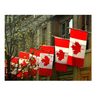 Canada House flags Postcard