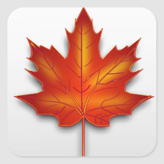 Canada leaf square sticker