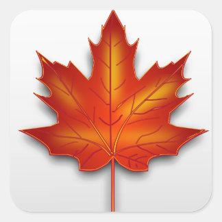 Canada leaf square sticker