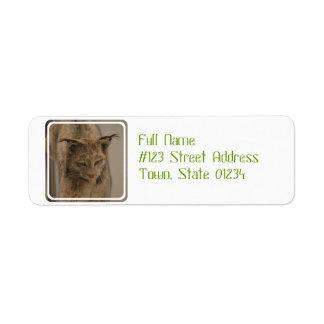 Canada Lynx Return Address Label