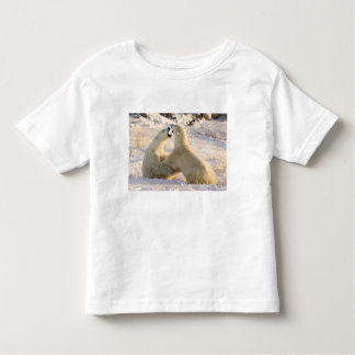 Canada, Manitoba, Hudson Bay, Churchill. 3 Toddler T-shirt