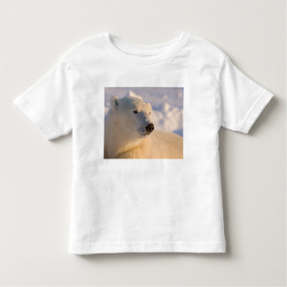 Canada, Manitoba, Hudson Bay, Churchill. 4 Toddler T-shirt