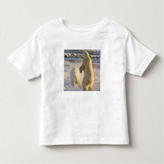 Canada, Manitoba, Hudson Bay, Churchill. Toddler T-shirt