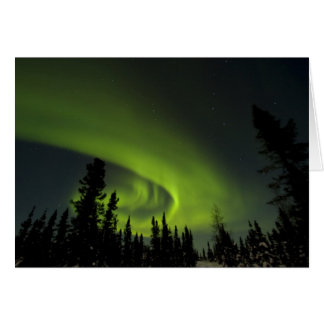 Canada, Manitoba. View of aurora borealis and Card