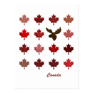 Canada Maple Leaf and Moose postcard