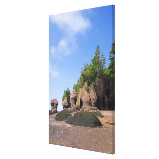 Canada, New Brunswick, Hopewell Cape, Bay of Stretched Canvas Prints