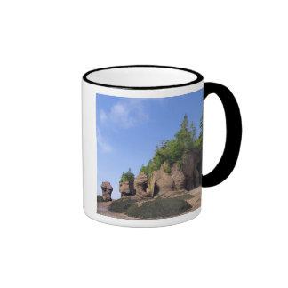 Canada, New Brunswick, Hopewell Cape, Bay of Coffee Mugs