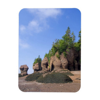 Canada, New Brunswick, Hopewell Cape, Bay of Rectangular Photo Magnet