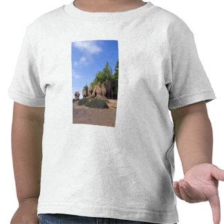 Canada, New Brunswick, Hopewell Cape, Bay of T Shirt