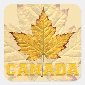 Canada Souvenir Stickers Varsity Canada Sticker