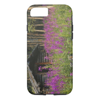Canada, Yukon, Ross River area, Abandoned cabin iPhone 7 Case