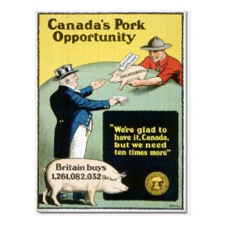 Canada's Pork Opportunity Postcard
