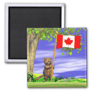Canadian Beaver and Flag Square Magnet
