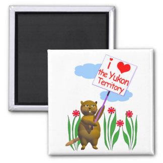 Canadian Beaver Loves the Yukon Magnet