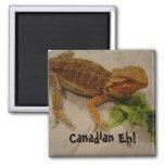 Canadian Eh! - magnet Refrigerator Magnets