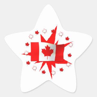 Canadian Flag Design Star Sticker