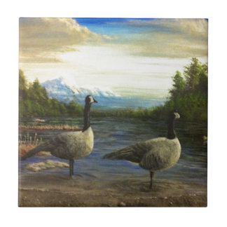 Canadian Geese at Beaver Lake. Tile