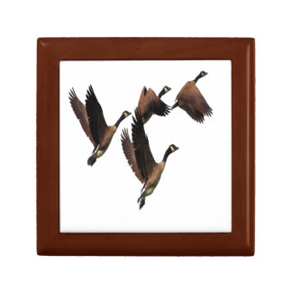 Canadian geese flying in a flock kids design gift box