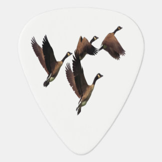 Canadian geese flying in a flock kids design guitar pick