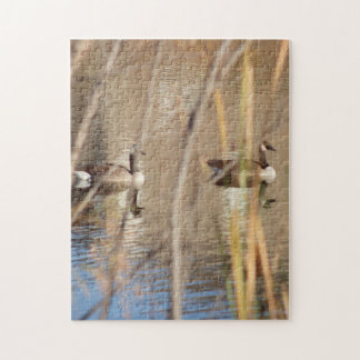 Canadian Geese Puzzle