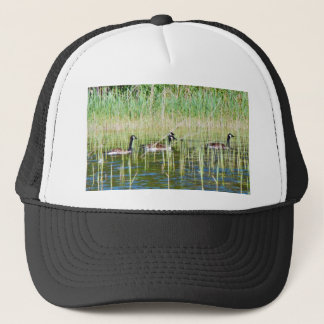 Canadian Geese Swimming Trucker Hat